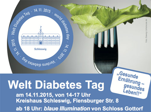 world diabetes day Nov1th 2015 Schleswig